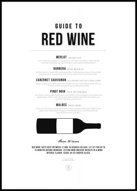 Guide to Red Wine Póster