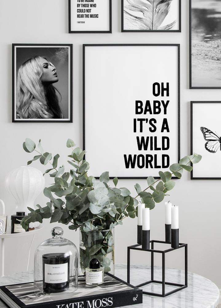 Oh baby it's a wild world Póster